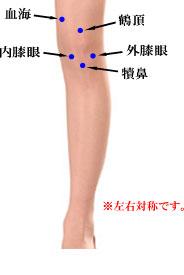 出張専門 こしがや鍼灸治療所 膝の痛み 膝関節痛