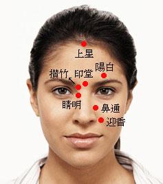 出張専門 こしがや鍼灸治療所 鼻炎