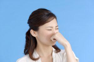 出張専門こしがや鍼灸治療所 症例別対処法 鼻炎 鼻づまり