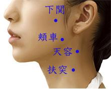 出張専門 こしがや鍼灸治療所 顎関節症 顎の痛み