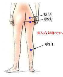 出張専門こしがや鍼灸治療所 坐骨神経痛
